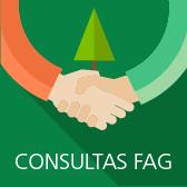 Enlace a Consultas FAG