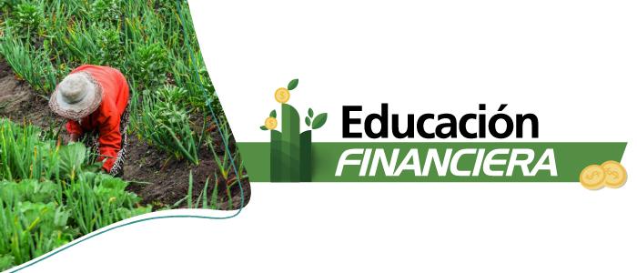 Banner educación financiera