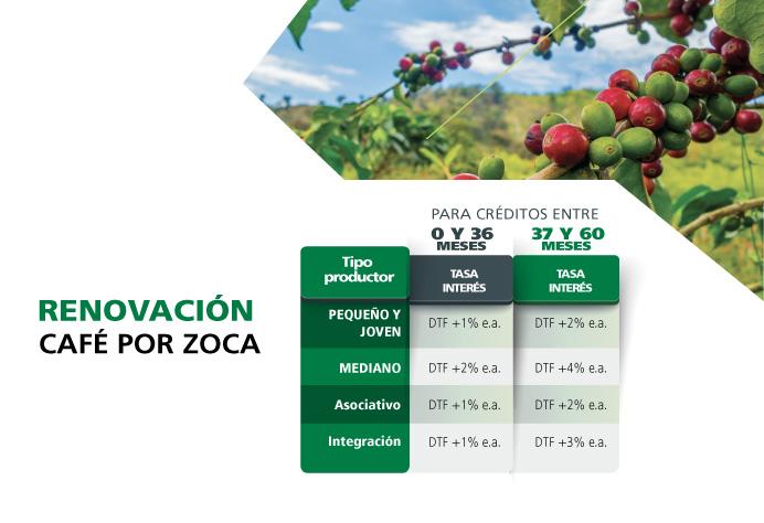 Renovación Café por zoca: Para créditos entre 0 y 36 meses,<br />pequeño productor: DTF +1%e.a.<br />mediano productor: DTF +2%e.a.<br />asociativo: DTF +1%e.a.<br />integración: DTF +1%e.a.<br />Para 37 y 60 meses,<br />pequeño productor: DTF +2%e.a.<br />mediano productor: DTF +4%e.a.<br />asociativo: DTF +2%e.a.<br />integración: DTF +3%e.a.