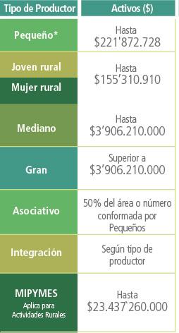Tabla de activos por tipo de productor: pequeño 221872728, joven y mujer rural 155310910, mediano 3906210000, Grande 3906210000, Asociativo 50% del área o número conformada por pequeños, segregación según tipo de productor, MiPymes 23437260000.