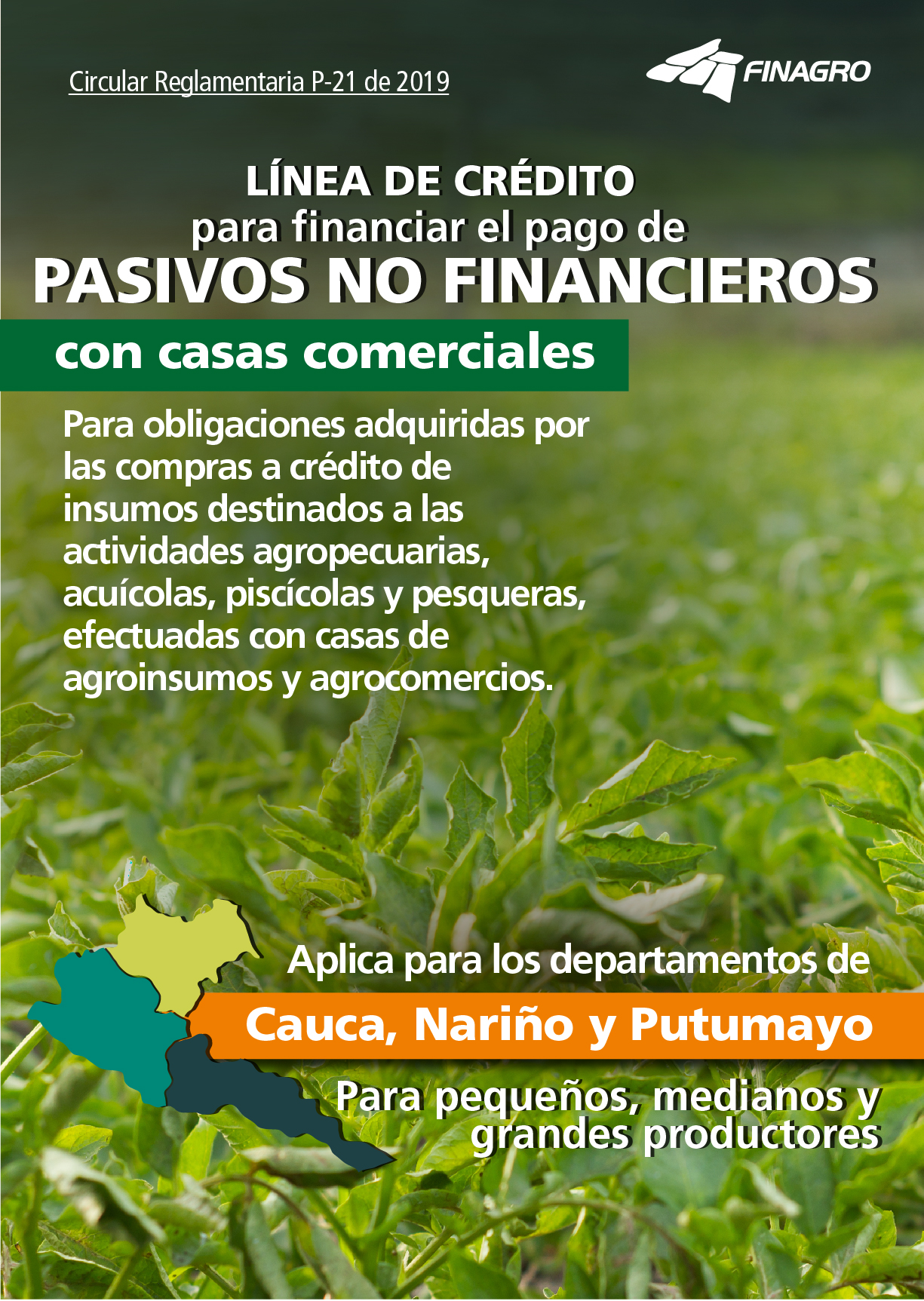 Pasivos no financieros