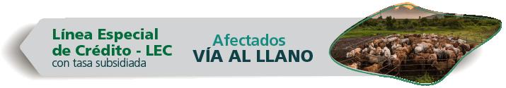 LEC Afectados Vía al Llano